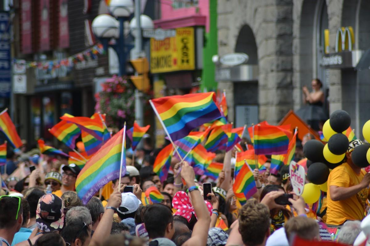 gay gay pride pride parade pride rainbow flag human relationship 605513