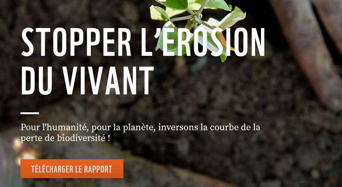 Screenshot 2020 09 10 Rapport Planete Vivante 2020 WWF France