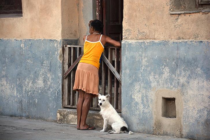 woman dog cuba neighbor conversation preview