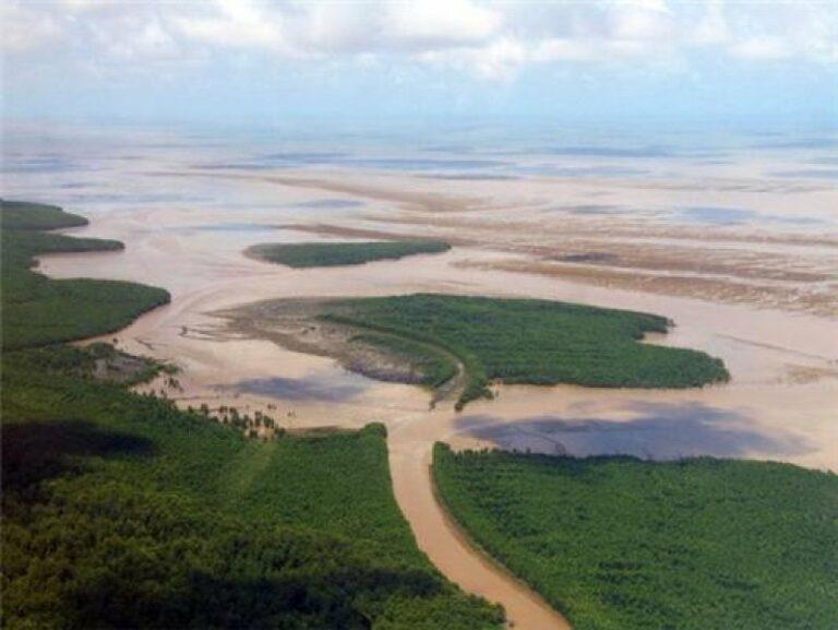 littoral guyane